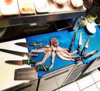 敢不敢和章鱼一起挑战