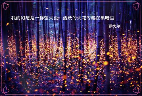 唯美浪漫泰戈尔情诗图片_我的幻想是一群萤火虫